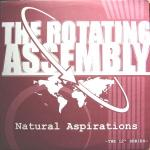 Natural Aspirations -The 12inch Series-